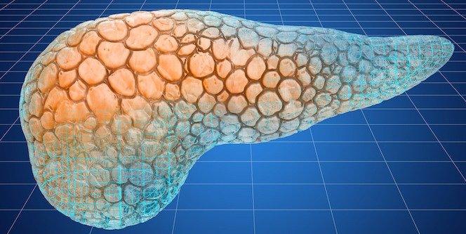 the artificial pancreas