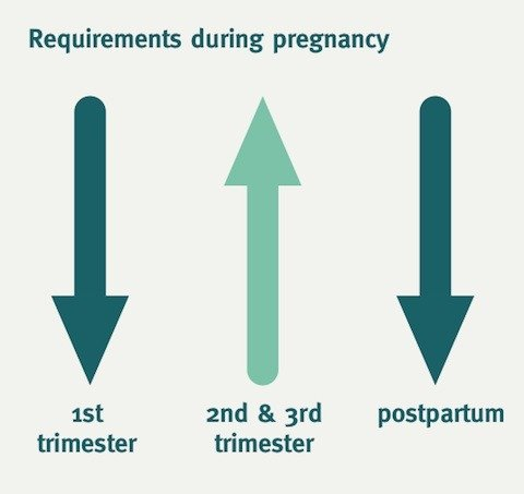 FIT for pregnancy- Insulin requirements