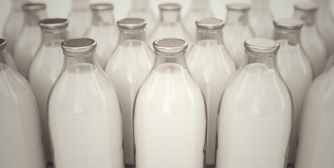 Navigating the grocery store for milk and milk products
