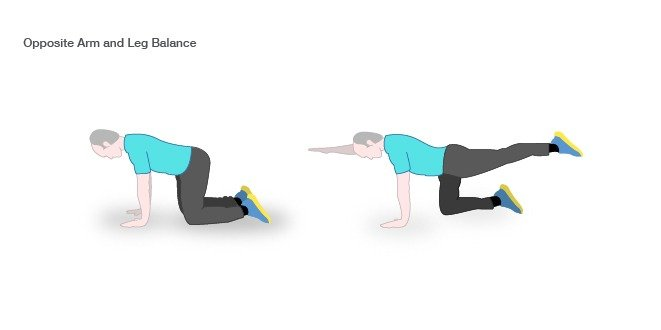 arm leg balance